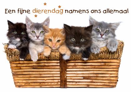 dierendag-jpg.5778, Zondag 4 oktober 2015 wereld dierendag, Evenementen, Kattenforum SjEd, 8557, dierendag-jpg.5778, 18:31, 25 sep 2015, 25 sep 2015, 1165, 18:31