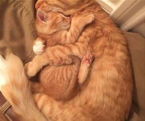 Getting_All_Hugged_Up_s.jpg