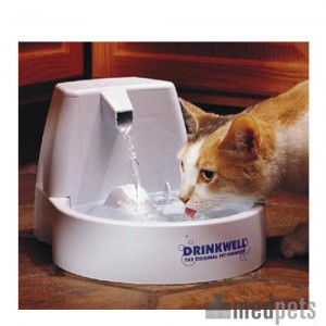 product_drinkwell_original_pet_fountain_medpets_3_1411997288_8869-jpg.7904, help! mijn kat kan (nog steeds) niet zelfstandig drinken!, Gezondheid, Ziektes etc, Kattenforum SjEd, 12854, product_drinkwell_original_pet_fountain_medpets_3_1411997288_8869-jpg.7904, 19:11, 27 nov 2018, 28 nov 2018, 3630, 23:56