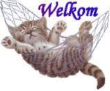 welkom-png.7985, ik ben nusa, Stel jezelf voor, Kattenforum SjEd, 13869, welkom-png.7985, 23:11, 21 jun 2019, 21 jun 2019, 4484, 22:44