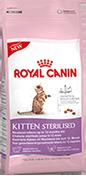 rk3200-kitten-sterilised_verp.png