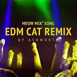 Meow Mix Song | EDM Cat Remix by Ashworth - YouTube