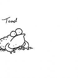 Simon Draws: Toads and Frogs