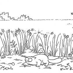 Field Trip - Simon's Cat