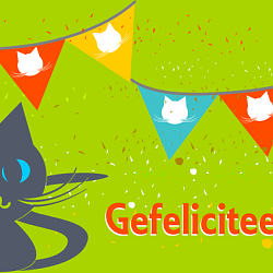 Verjaardagskaart katten slingers