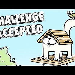 Camouflage Challenge: Simon's Cat