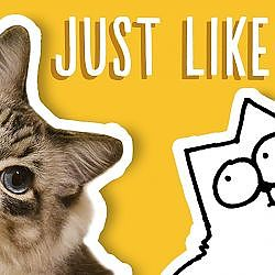 Just Like My Cat - Simon's Cat