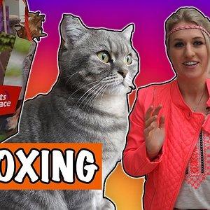 Kattenpakket unboxing + WINACTIE   DierenpraatTV